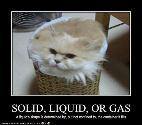 solid liquid  gas cheezburger funny memes funny