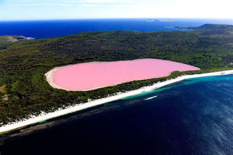 pink lake australia the pink lake hillier of australia youtube