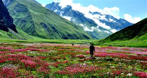 top 10 most beautiful valleys in india world blaze
