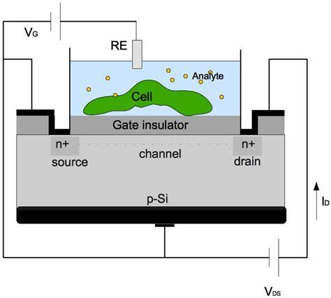 transistor gate insulator 28 images av ant 244 nio carlos 6627 cep belo horizonte mg brazil