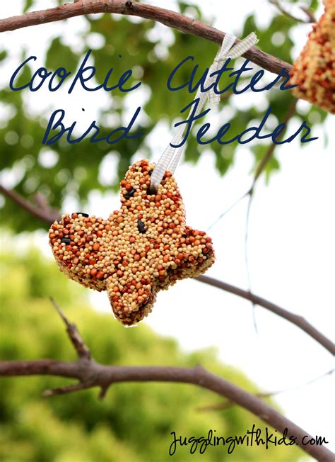 Cookie Cutter Bird Feeder cookie cutter bird feeder juggling with