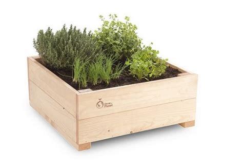erbe aromatiche in casa erbe aromatiche in casa possibile con erbizia pollicegreen