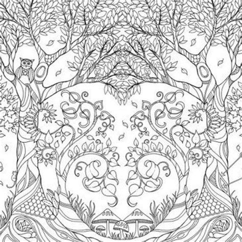 johanna basford coloring books for sale 1000 images about coloring adults on dovers