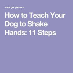 how to teach a puppy to shake your shake and on