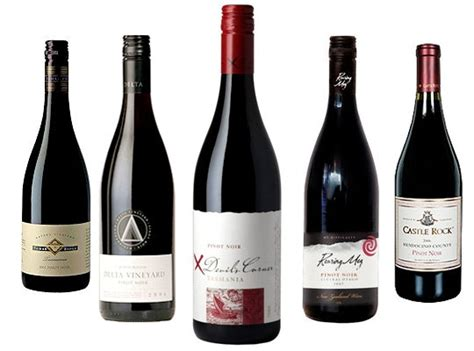 best cheap wine cheap wine best pinot noir 20 kitchn