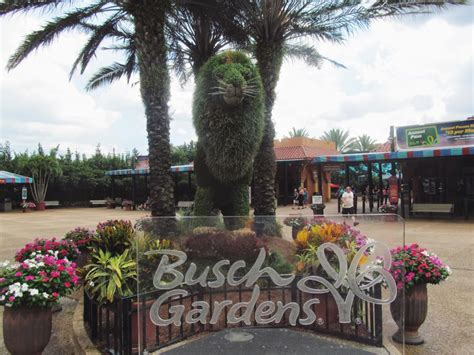 Busch Gardens Showtimes by Four Times Ta Stole Simply Sinova