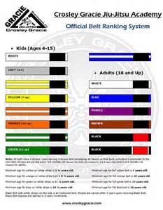 jiu jitsu belt colors 1000 images about jiu jitsu system on