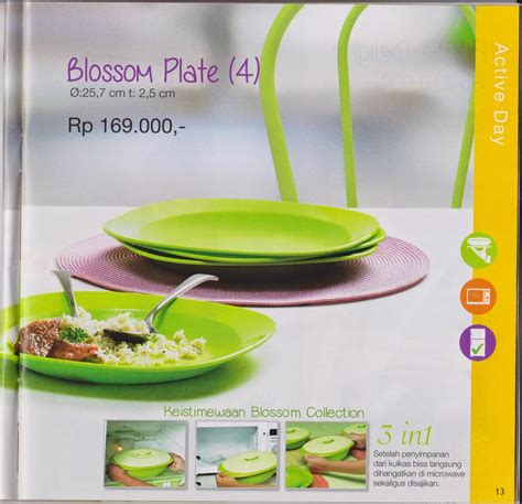 Medium Summer Fresh Set Of 4 Tupperware distributor tupperware murah bekasi katalog promo