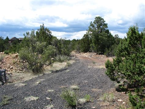 2 5 acre treed flagstaff lot with a 2 car garage workshop wild wild west 9580 e ciervo trail