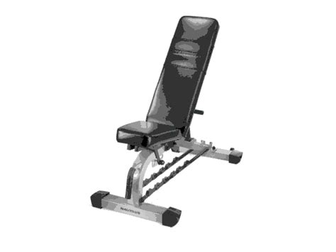 nautilus workout bench compare prices of home gym equipment read home gym equipment reviews buy online