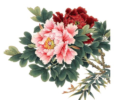 peonies and orange blossoms designing pin by sevin 231 yılmaz print pattern designer on flowers various peony