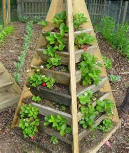 raised bed ideas raised beds ideas for the design of your garden in