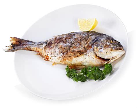 fish food fish baby digezt