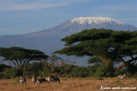 ladari montagna http www sports sante images kilimandjaro sommet d
