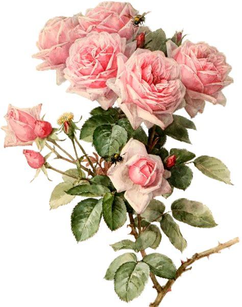 imágenes flores vintage vintage flower art prints www pixshark com images