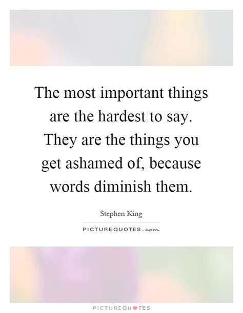 The Things You Would Said the most important things are the hardest to say they are the picture quotes