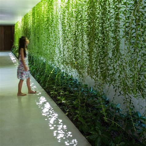 vietnam house design mia design studio envelopes vietnam house in plant covered walls and courtyards