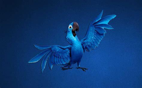 wallpaper cartoon blue parrot blue art cartoon 4k ultra hd backgrounds wallpaper