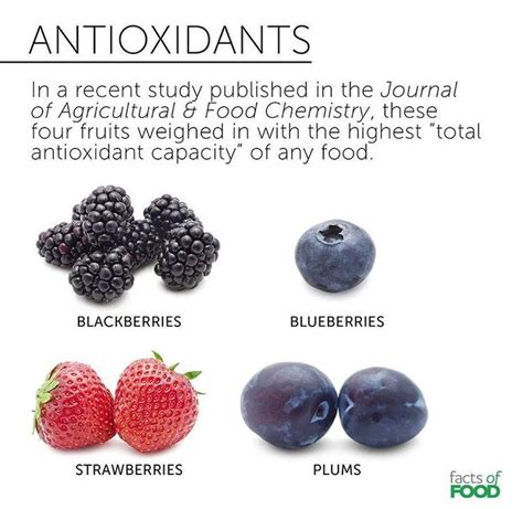 Antioxidants Detox The by 1000 Images About Plant Based Diet On Health