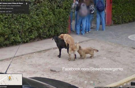 imagenes raras de google street view street view argento el facebook que publica las fotos m 225 s