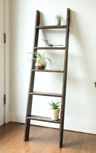 la plante comme objet deco ideas cactus succulents garden pinterest salle de bain salle