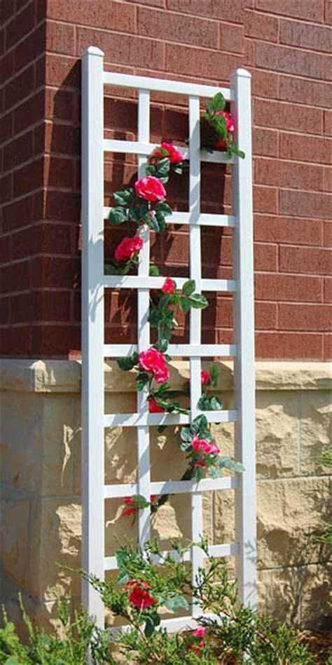 Trellis Gardening Ideas 17 Best Ideas About Garden Trellis On Pinterest Trellis Trellis Ideas And Landscaping Ideas