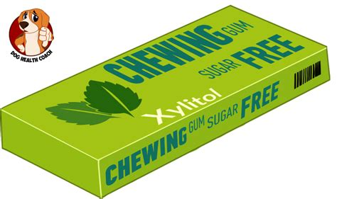 is bad for dogs is xylitol bad for dogs sugar free gum a killer really vet approved