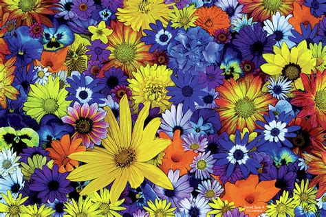 flower garden 1 painting by jq licensing