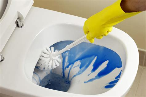 clean a bathroom clean a toilet the right way