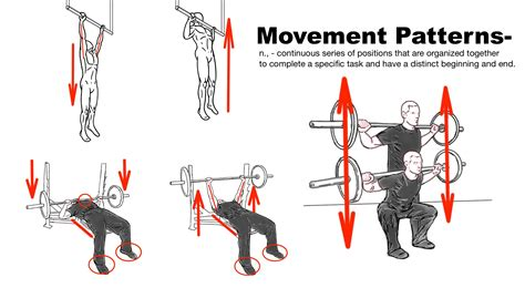 bench press biomechanics the art of stretching prehab exercises