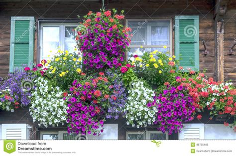 win with flower windows with flowers stock photo image 48755406