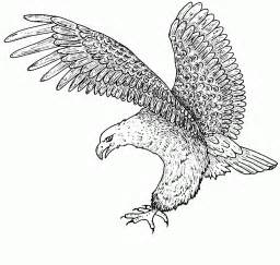 coloring pages bald eagle free printable bald eagle coloring pages for