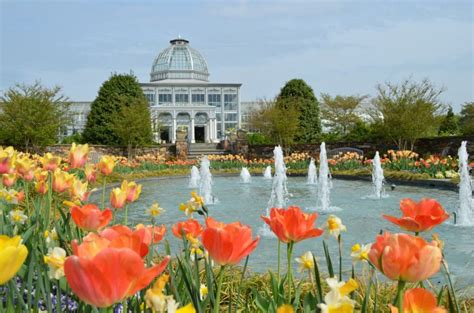 Ginter Park Botanical Gardens 5 Botanical Gardens In Major Cities And Their Nearby Cgrounds