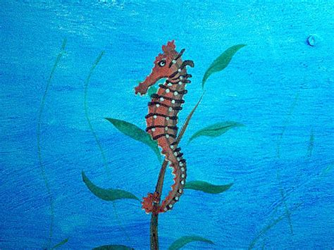 Farm Wall Murals under the sea mural featuring sedgewick seahorse concrete