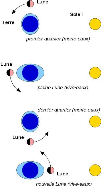 diagramme objets interactions pour la lune 1 energie des mar 233 es energie des vagues et des mar 233 es