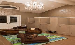 Pet Room Ideas by Designing Ideas For Small Spaces Dog Room Design Pet