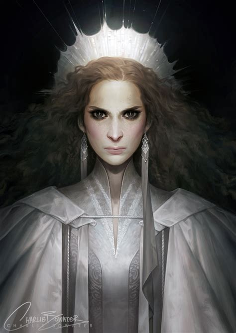 the art of charlie the geeky nerfherder the art of charlie bowater