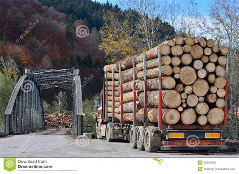 How To Build A Small Cabin In The Woods truck hauling logs stock photo image 42344092