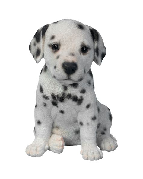 puppy pal pet pal dalmatian puppy resin garden ornament 163 9 99 garden4less uk shop