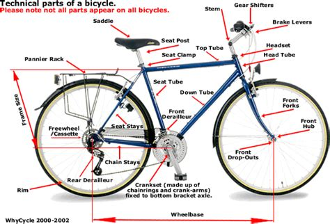 bicycle parts diagram bike maintenance class week 1 introduction and flat