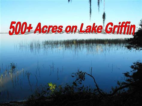 p g fruitland mo florida waterfront property in mt tavares leesburg