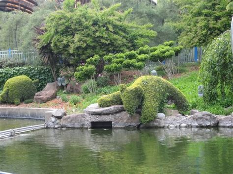 Bonfante Garden bonfante gilroy gardens ca topairy hedge