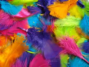 colorful feather bright colored feathers by nelliesnicsnclips on etsy
