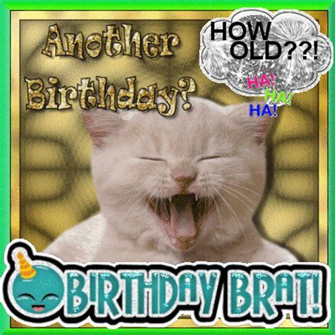 birthday brat picture  blingeecom