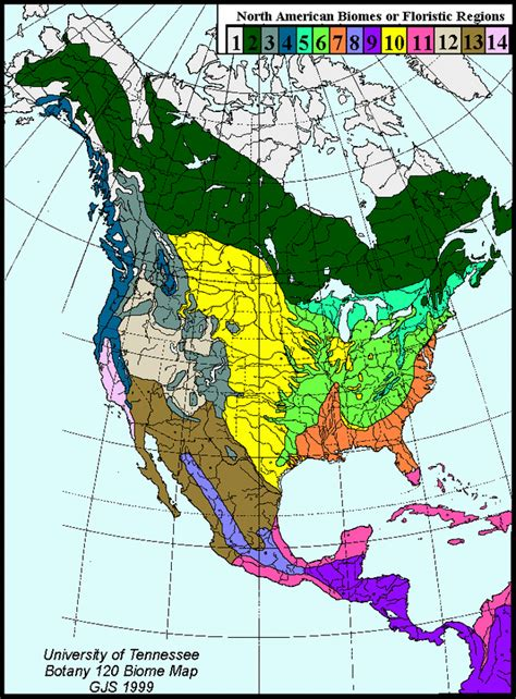 Biome Map Of North America by Global Location The Taiga Biome