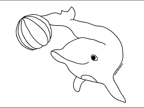coloring pages water animals cute dolphin jump colour drawing hd wallpaper patterns