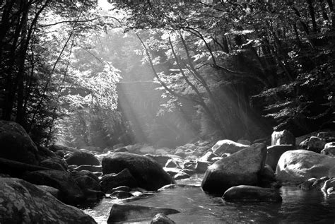 black and white nature wallpaper color smoky mountain black and white 013 b w landscape