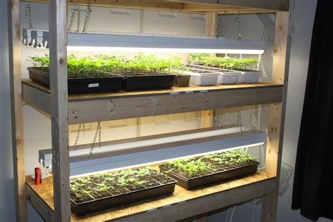 shop lights for seed starting how to build an indoor seed starting rack cheap old