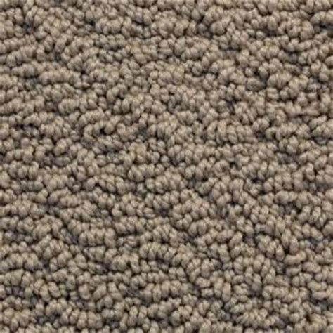 softspring memorable ii color taupe 12 ft carpet 55015 the home depot