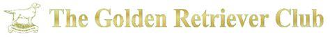 golden retrievers uk the golden retriever club golden retrievers uk